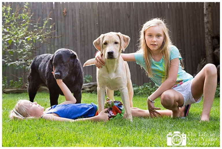 dogs are a girls - photo #40