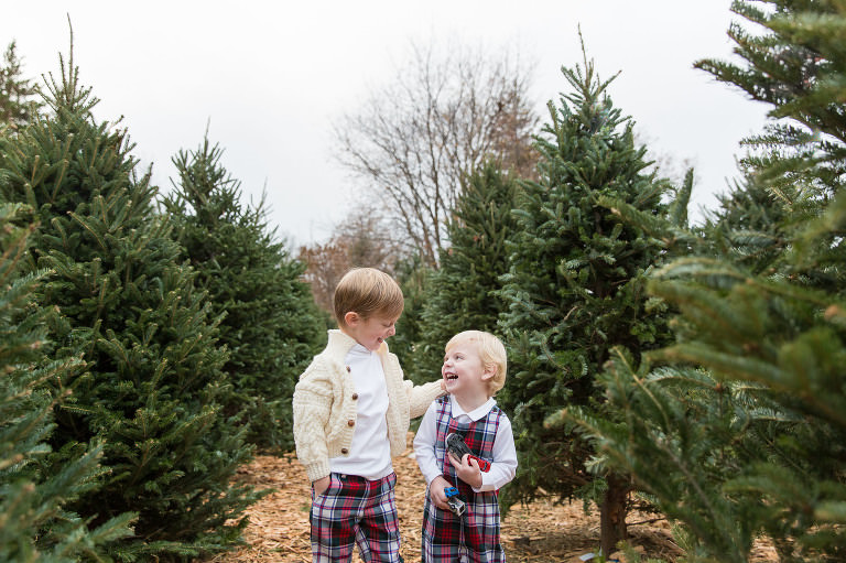 Christmas Card Photographer